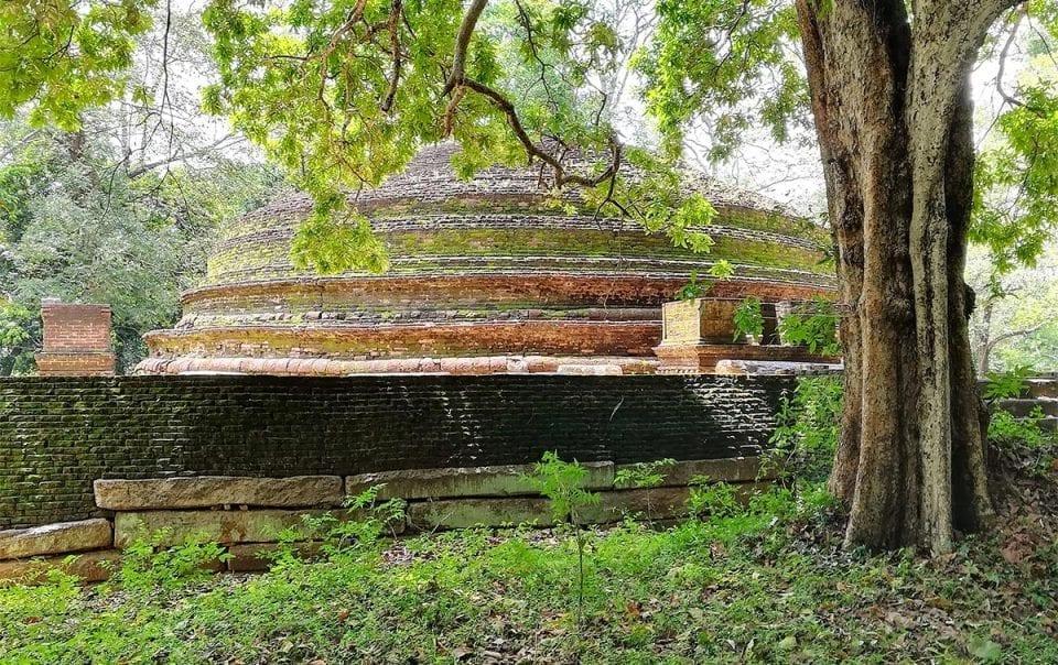 Secret Sri Lanka travel advice from Jungle Tide - The cultural Triangle
