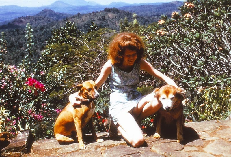 Sally Martin aged twelve or thirteen at Meenawatte around 1970, with her dogs Jill and Puffin.