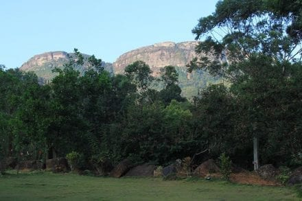 View from Jungle Tide Guest House to Pig Rock (Oorogala) in the Hanthana Ranges, one of the walks accessible from the accommodation
